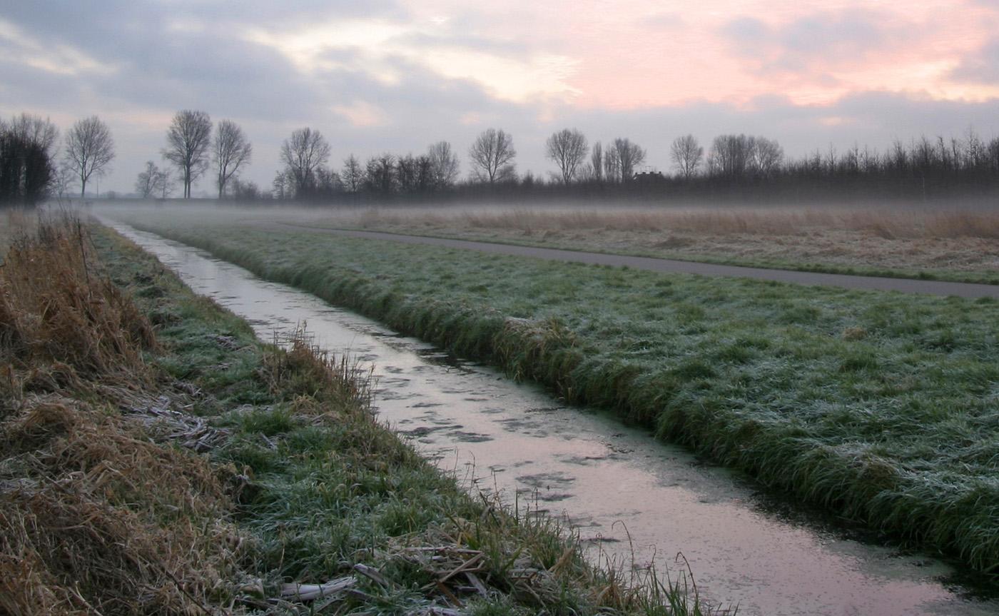 2008-01-01 Een polder landschap in de vroege ochtend van de winter. ANP COPYRIGHT SVB