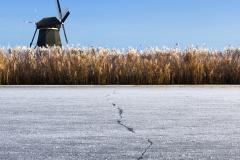 Winter - Kinderdijk