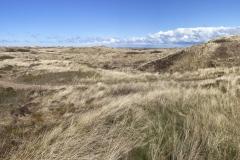 DEN2_Panorama1