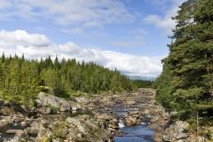 2009-07-12 In Noorwegen vind je de rust in de uitgestrekte en ruige natuur met veel bossen, bergen en wild water. ANP COPYRIGHT SVB